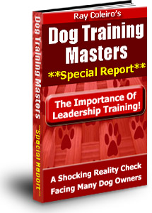 Click here to get The Special Dog Training Report